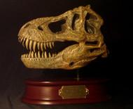 Tyrannosaurus Skull Replica by DinoStoreus