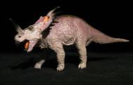 Styracosaurus by Carnegie