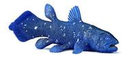 Coelacanth by Wild Safari