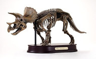 Triceratops Skeleton by DinoStoreus