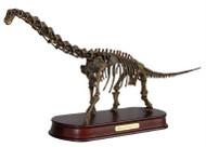 Brachiosaurus Skeleton by DinoStoreus