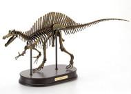 Spinosaurus Skeleton by DinoStoreus
