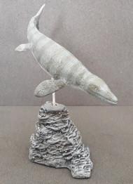 Platecarpus by Paleo-Creatures