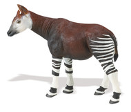 Okapi by Safari Wildlife Wonders