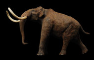 Steppe Mammoth Resin Kit by Lu Feng Shan