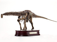 Apatosaurus Skeleton by DinoStoreus