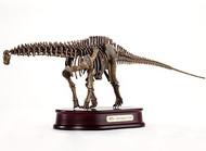 Apatosaurus Skeleton by DinoStoreus