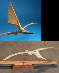 Nyctosaurus Flying 1:10 Resin Kit by Dan LoRusso