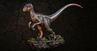 Velociraptor by Itoy