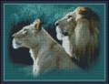 Portrait of Lions