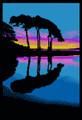 A Vibrant Sunset