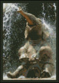 Splashing Elephant
