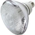 16W PAR-38 Electronic Compact Fluorescent Flood Bulb