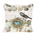 Egg and Nest Collection-Pillow