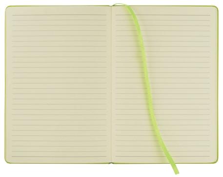 limegreen-journal-open.jpg