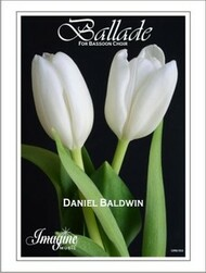 Ballade for Bassoon Choir