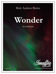 Wonder (download)