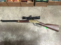 Henry Golden Boy - 17 HMR with Nikon Scope