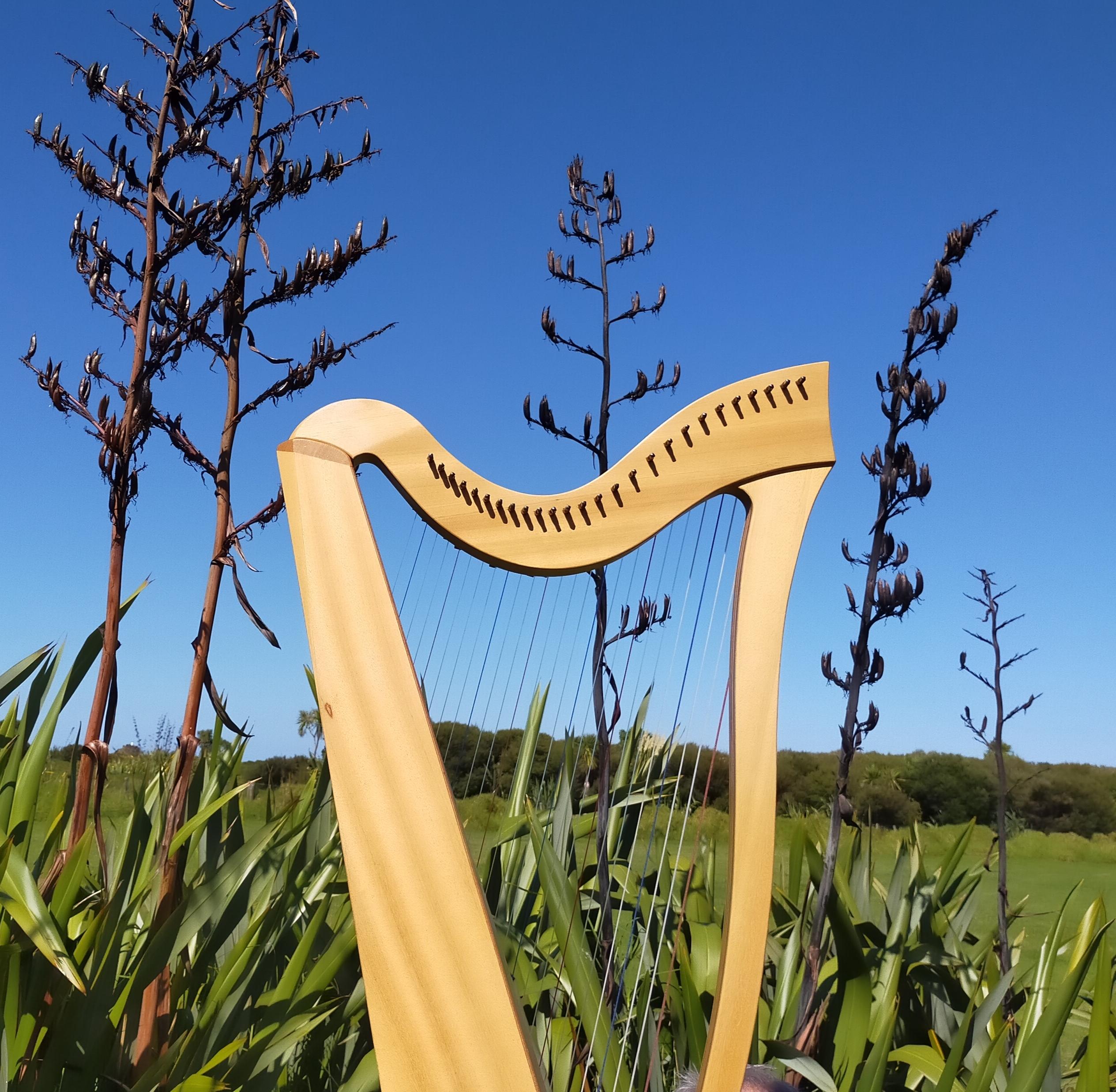 blue-sky-harping-in-nz-anna-dunwoodie.jpg