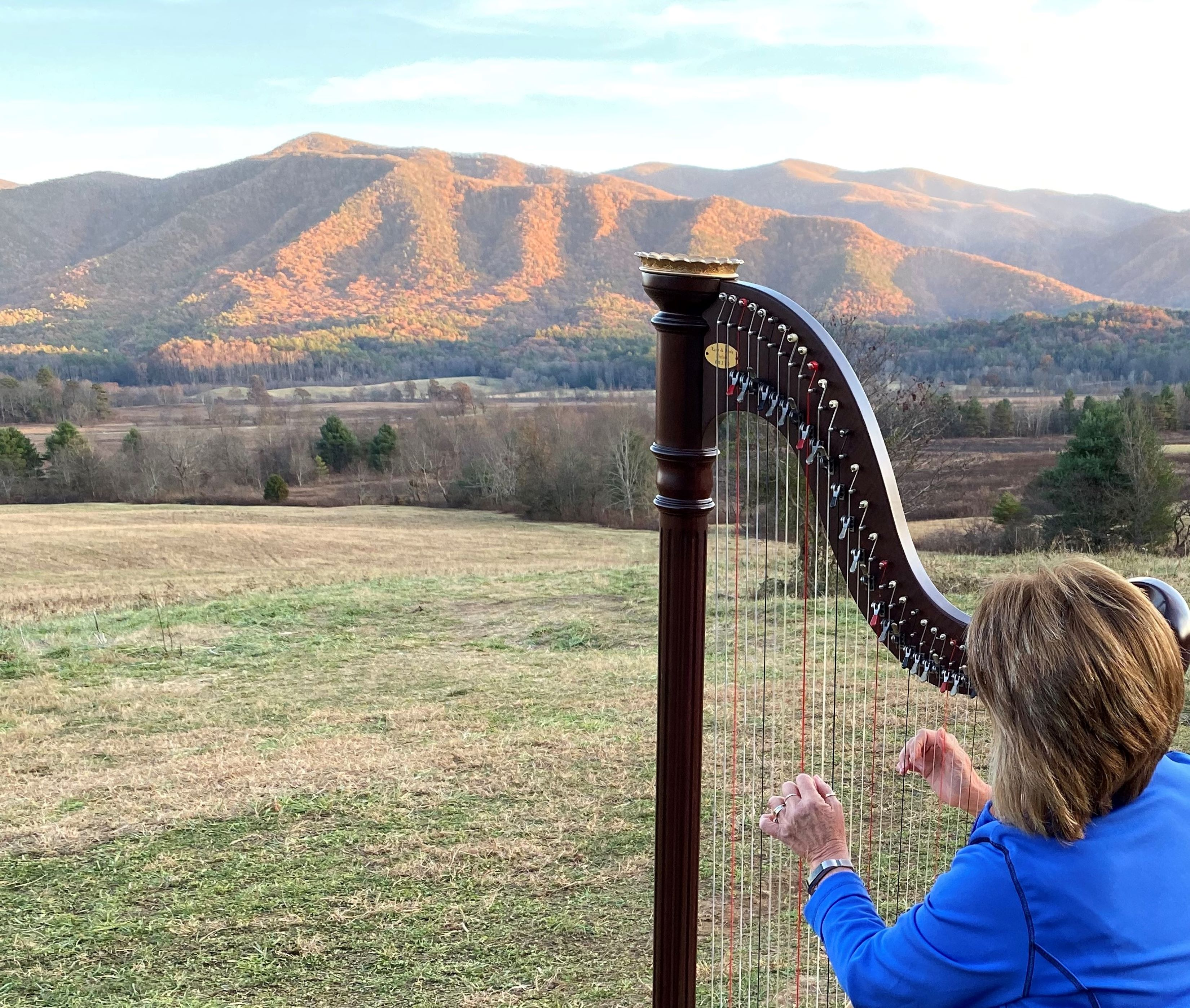 mountain-harp-from-lela-moore.jpg
