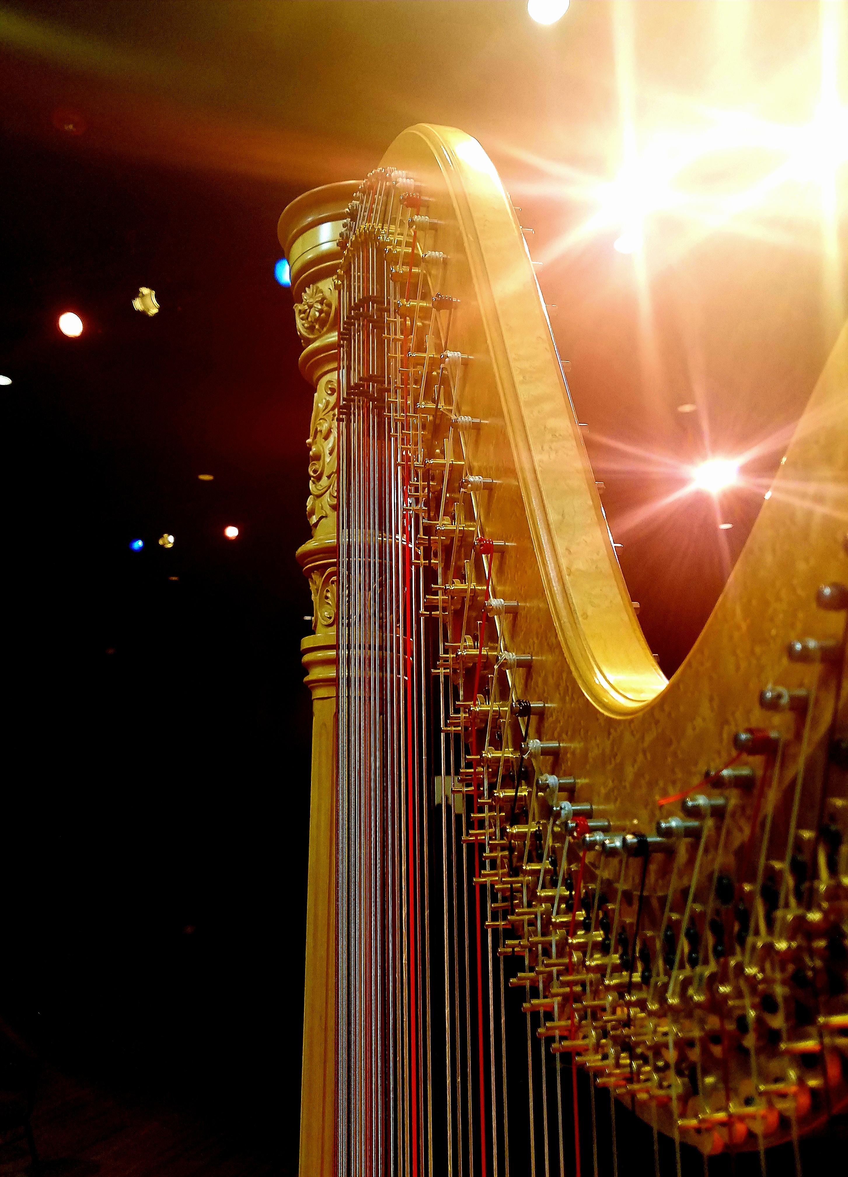 stage-lights-fromanastasia-arango.jpg