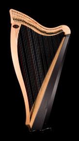 Dusty Strings Ravenna 34 - Build Your Harp