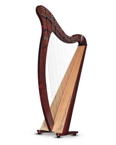 Salvi Donegal in Mahogany Finish