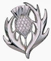 6465-10 Scottish Thistle Brooch