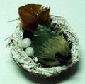 Bird on Nest - Brown - Small