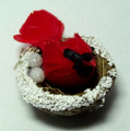Bird on Nest - Red - Small