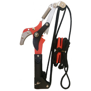 B553 Compound Gear-Drive Pole Pruner Head