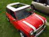 "1976-1983 Mini 35""  x  45"" Sliding Ragtop Folding Sunroof Kit"