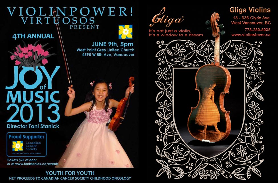 European Violin Brands - Gliga Violins Joy Of Music and Toni Stanick