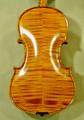 4/4 Gliga Gama Elite Violin - Guarneri Pattern - Code C5275V