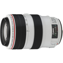 Canon EF 70-300mm f/4-5.6L IS USM Telephoto Lens 35 day/140 week/280 month