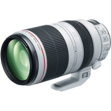 Canon EF 100-400mm f/4.5-5.6L IS II USM Lens 40 day/160 week/320 month