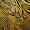zebra-roxy-gold.jpg