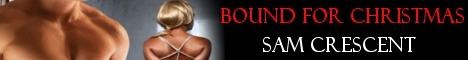 bfc-banner.jpg