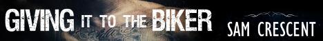givingittothebikerbanner.jpg