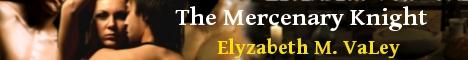 mercenaryknight-banner.jpg