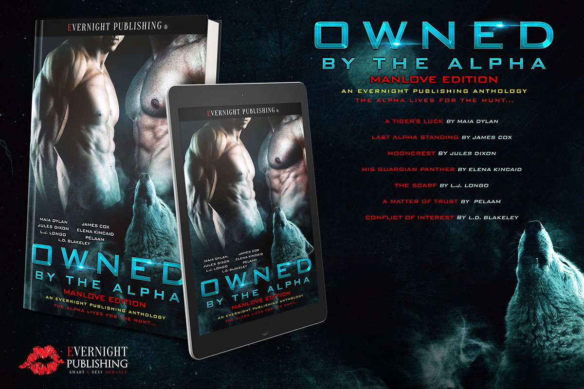 owned-by-the-alpha-antho2-evernightpublishing2017-ereader-small.jpg