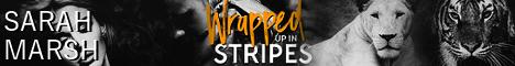 wrappedstripesbanner.jpg