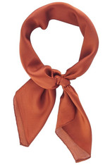 Burnt Orange Neck Tie