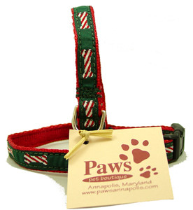 Candy Cane Bone Dog Collars for Tiny Dogs