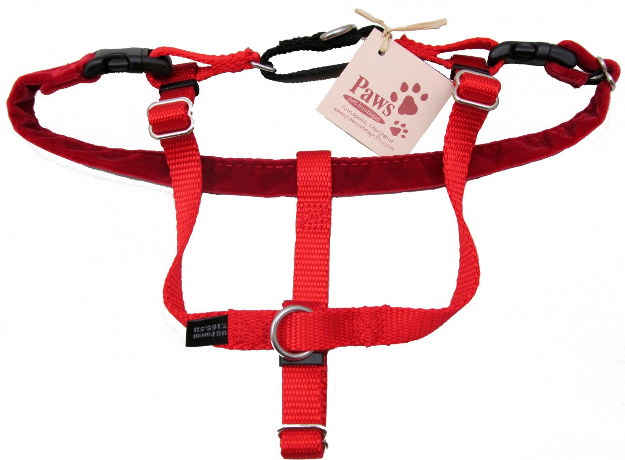 2 Ring Dog No Pull Harnesses At Pawpetboutique Com