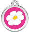 White Daisy on Hot Pink Enamel ID Charms