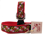 Great bold colors on these Maryland Flag Dog Collars.