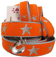 Orange Starfish Dog Collars made in USA