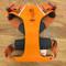 Orange Front Ring Dog Harness