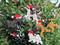 USA Made Dog Christmas Ornaments